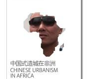 UCA1 copy